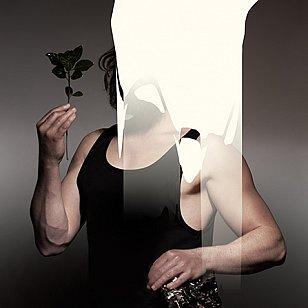 Zealandia_artwork