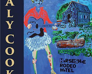Aly Cook: Horseshoe Rodeo Hotel (alycook.com)
