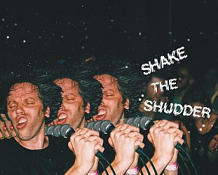 !!!: Shake the Shudder (Warp)