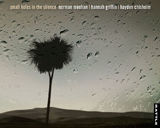 Meehan, Griffin, Chisholm: Small Holes in the Silence (Rattle)