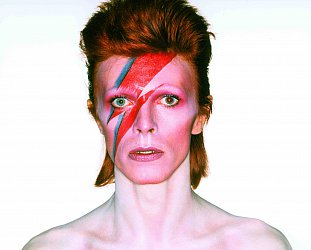 DAVID BOWIE IS (2015): Inside the mind of a pop culture chameleon