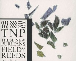 These New Puritans: Fields of Reeds (Infectious)