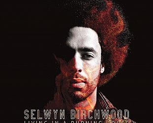 Selwyn Birchwood: Living in a Burning House (Alligator/Southbound)