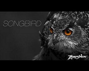 Lionsden: Songbird (usual digital outlets)