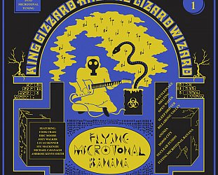 King Gizzard and the Lizard Wizard: Flying Microtonal Banana (Heavenly)