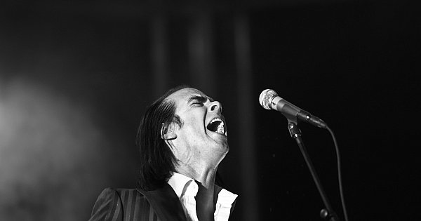 nick cave love song essay