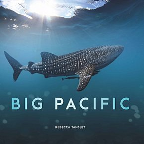 BIG PACIFIC, PRIME TV SERIES, and a book by REBECCA TANSLEY