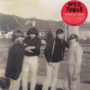 Various Artists: Wild Things (Vostok)