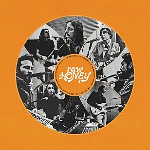 Drugdealer: Raw Honey (Mexican Summer/Southbound)