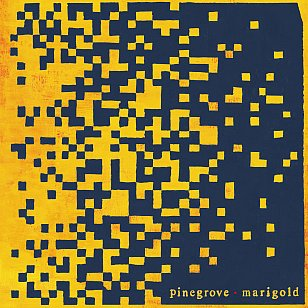 Pinegrove: Marigold (Rough Trade/Rhythmethod/digital outlets)