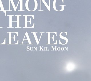 Sun Kil Moon: Among the Leaves (Caldo Verde)