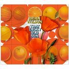 Brian Wilson: That Lucky Old Sun (Capitol)