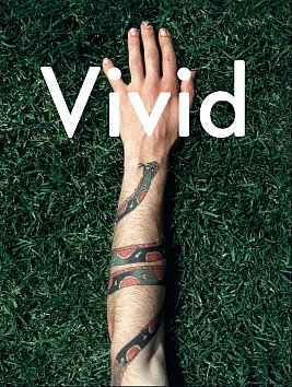 VIVID: THE PAUL HARTIGAN STORY by DON ABBOTT